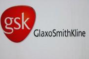 GlaxoSmithKline Factory