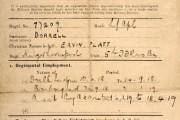 World War One - Soldier's Employment Record