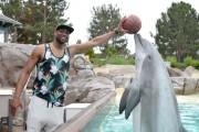 Dwyane Wade Visits SeaWorld San Diego