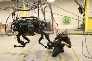 BigDog Robot At Boston Dynamics