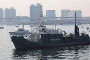 Japan killed 333 whales for scientific research